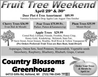 Fruit Tree Weekend