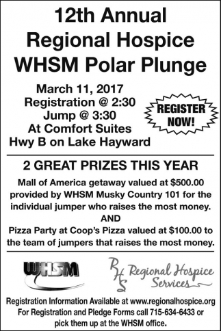 12th Annual Regional Hospice WHSM Polar Plunge