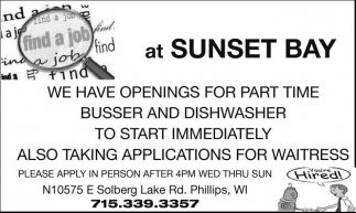 Busser and Dishwasher