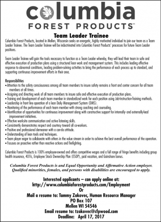 Team Leader Trainee