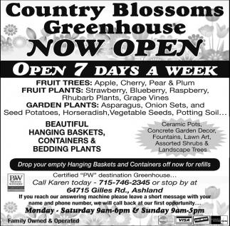 Now Open, Open 7 days a week