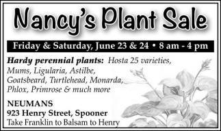 HARDY PERENNIAL PLANTS