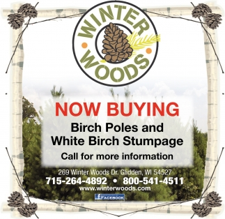 Now Buying Birch Poles and White Birch Stumpage