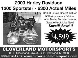 2003 Harley Davidson 1200 Sportster - 6300 Actual Miles