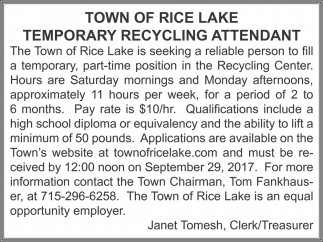 Teporary Recycling Attendant