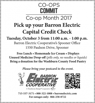 Pick Up your Barron Electric Capital Credit Check