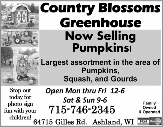 Now Selling Pumpkins!