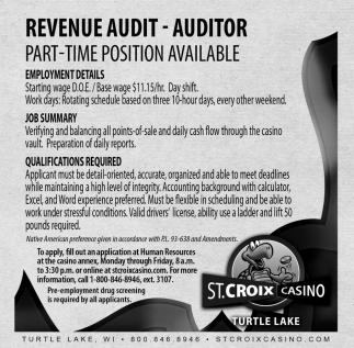 Revenue Audit, Auditor