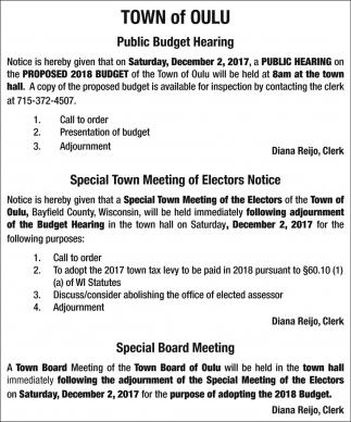 Public Budget Hearing