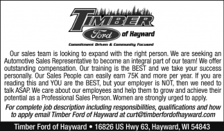 Automotive Sales Representative