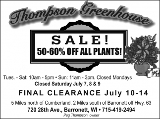 Sale 50-60% off all plants!