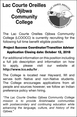 Project Success Coordinator/Transition Advisor