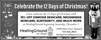 Celebrate the 12 Days of Christmas!