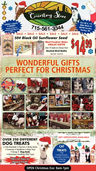 Wonderful Gifts Perfect For Christmas