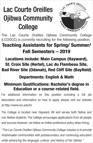Teaching Assistants for Spring/Summer/Fall Semesters - 2019
