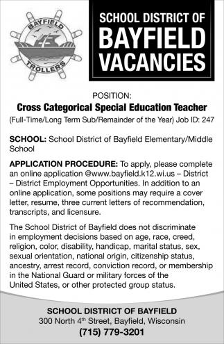 Cross Categorical Special Education Teacher