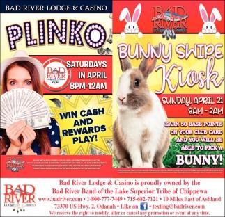 Plinko / Bunny Swipe Kiosk