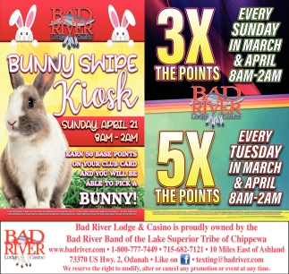 Bunny Swipe Kiosk / 3X The Points 5X The Points