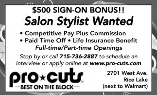 Salon Stylists