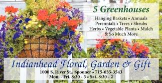 Hanging Basket, Annuals, Perennials, Trees, Shrubs, Herbs