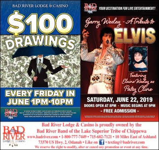 $100 Drawings / Garry Wesley A Tribute to Elvis