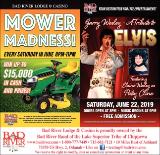 Mower Madness! / Garry Wesley A Tribute to Elvis