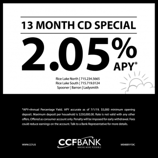 13 Month CD Special 2.05% APY
