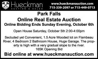 Park Falls Online Real Estate Auction