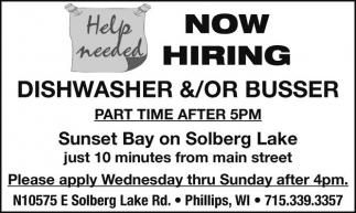 Dishwasher / Busser