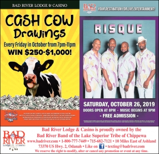 Cash Cow Drawings / Risque