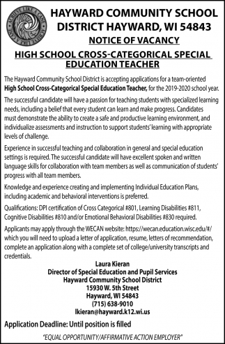 High School Cross-Categorical Special Education Teacher