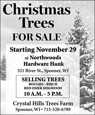 Christmas Trees for Sale, Crystal Hills
