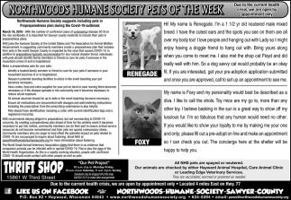 Pets Of The Week Northwoods Humane Society Sawyer County Hayward Wi